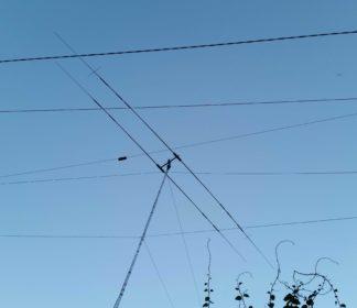 antennap2